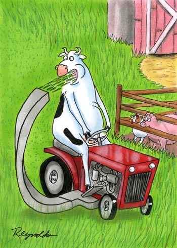 cow-mowing-lawn