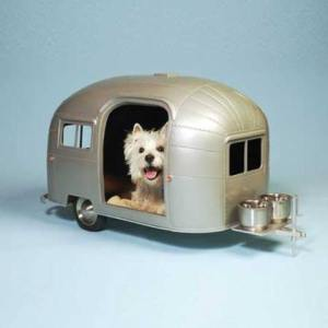 dog-trailer