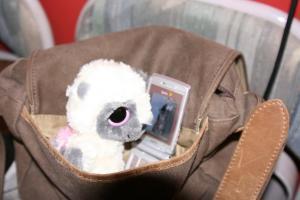 yoohoo-in-purse