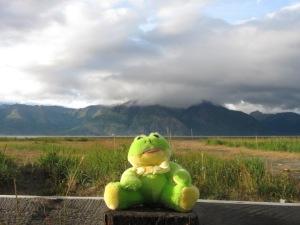 4b. Hope Froggie
