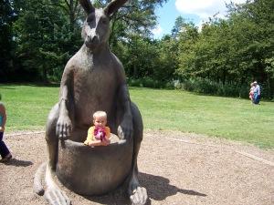 5. kangaroo