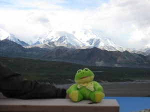 6c. Phin with Denali