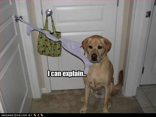 I can explain
